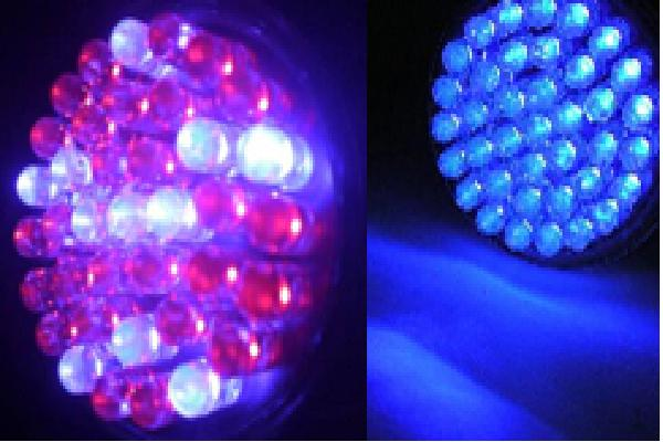 Lowest Price Led Light Therapy For Anti Aging Amp Acne Treatment